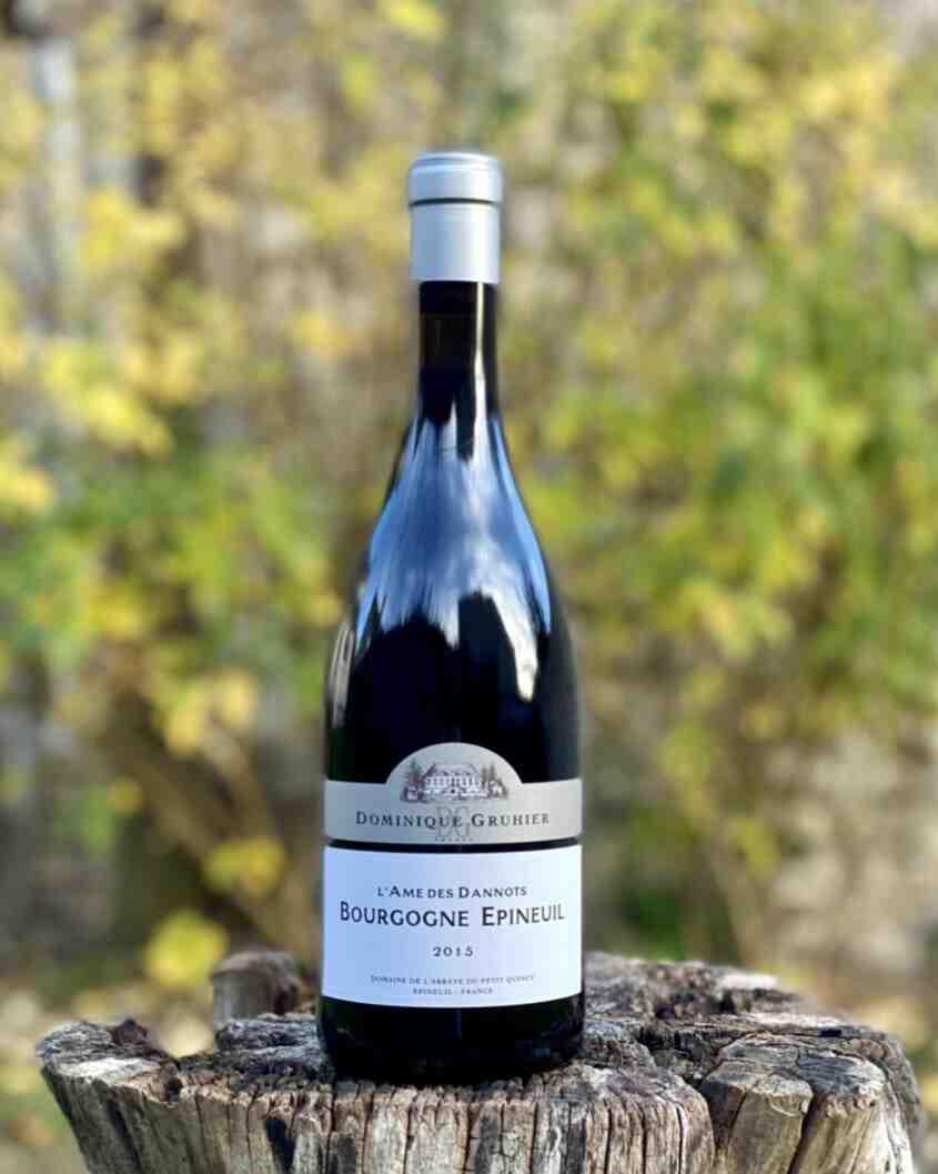Quel est le meilleur vin rouge?