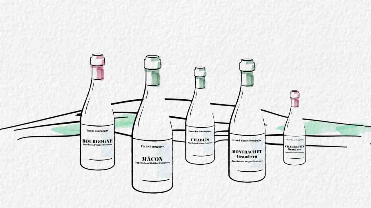 Quels sont les vins de Bourgogne?