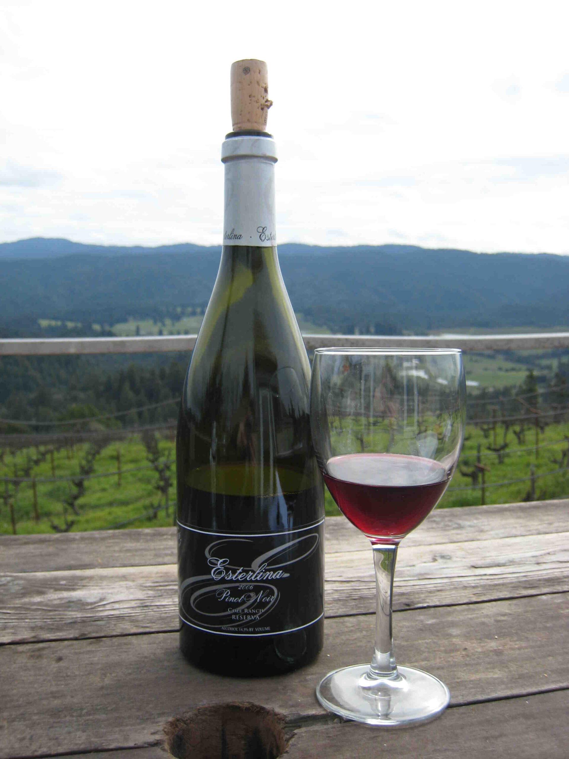 Qu'est-ce que le vin de pinot noir?