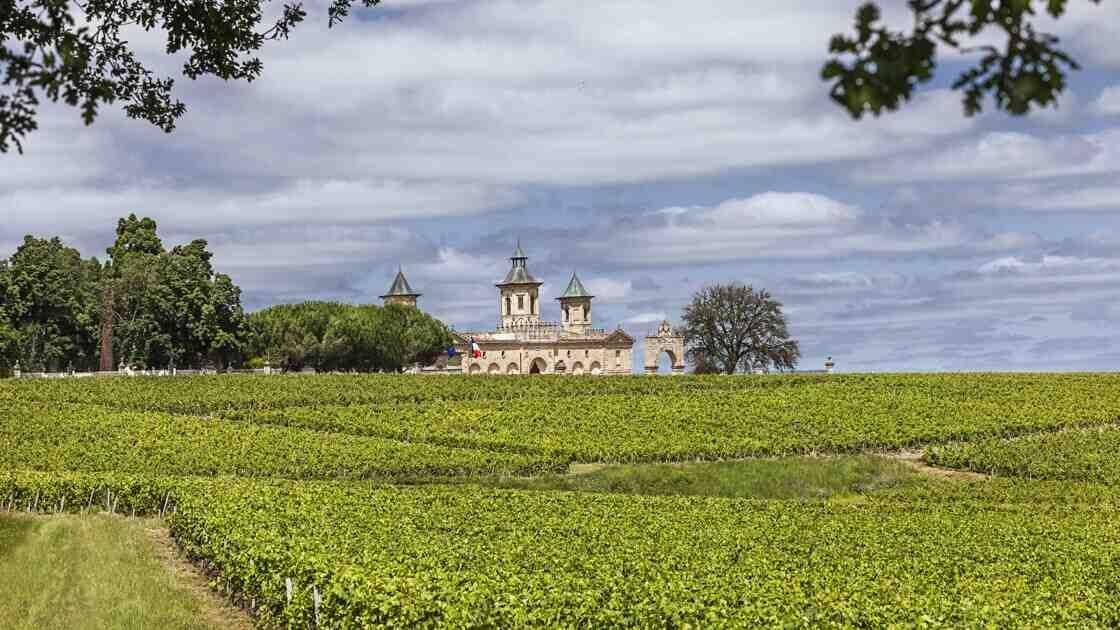 Quel est le plus petit vignoble de France?