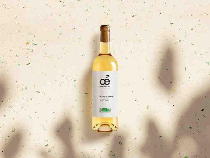 Quel est le vin blanc à prendre?