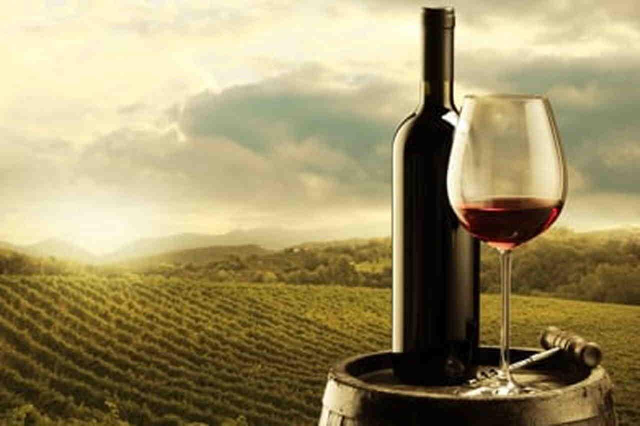 Quel est le vin le plus cher du monde?
