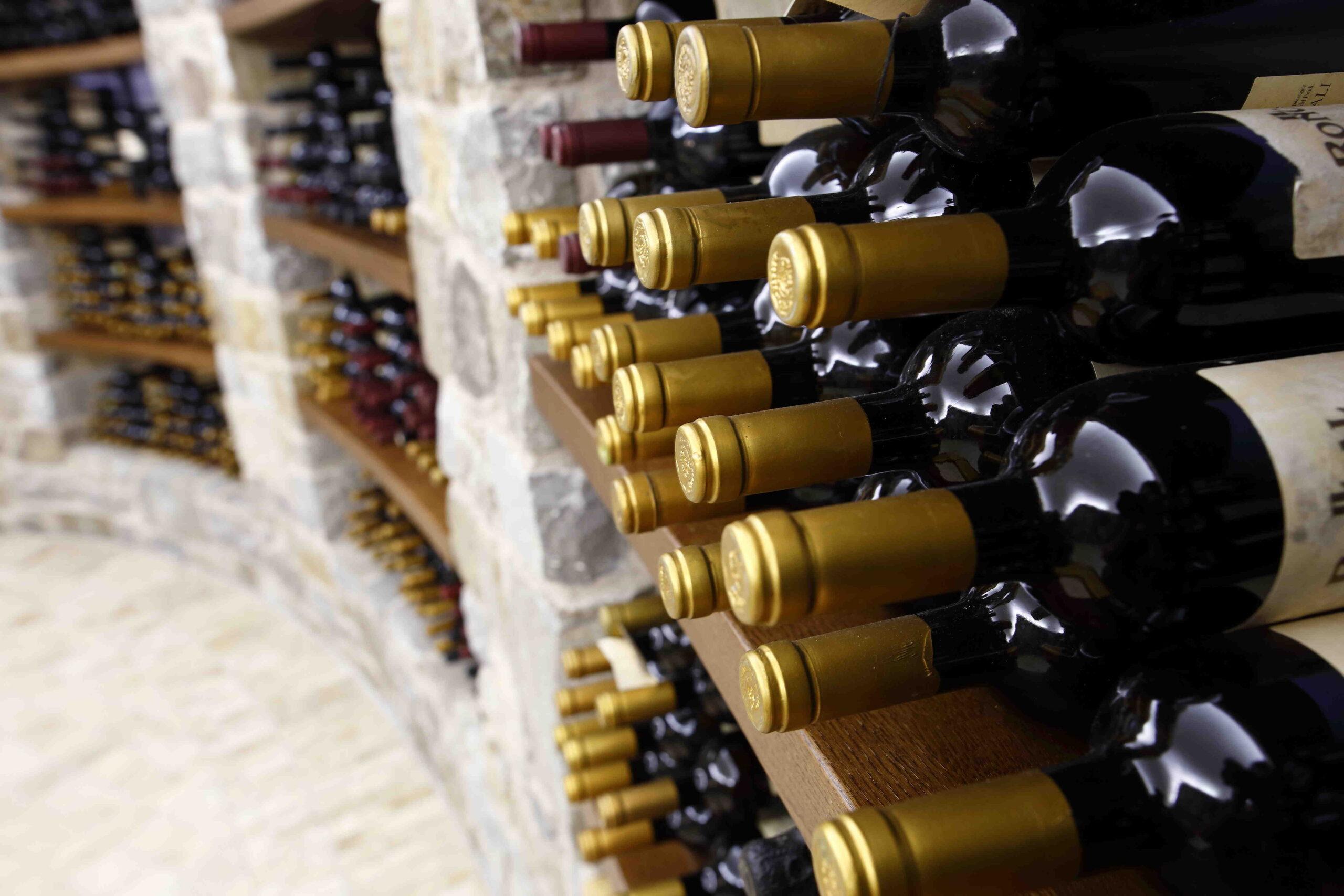 Quelle est la meilleure marque de cave à vin?
