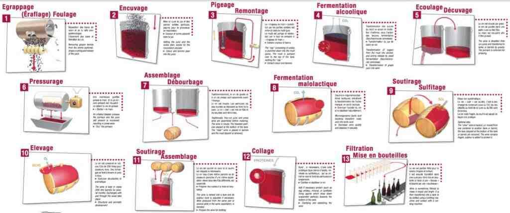 Comment faire du vin à partir de fruits ?