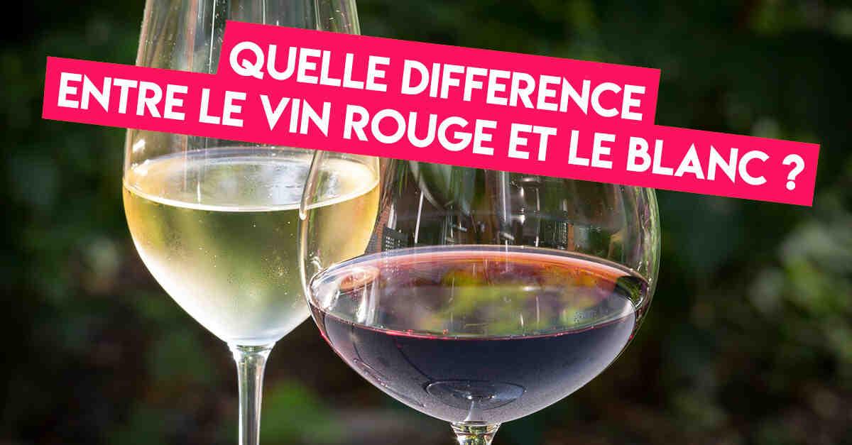 Quel vin rouge est le meilleur pour votre santé ?