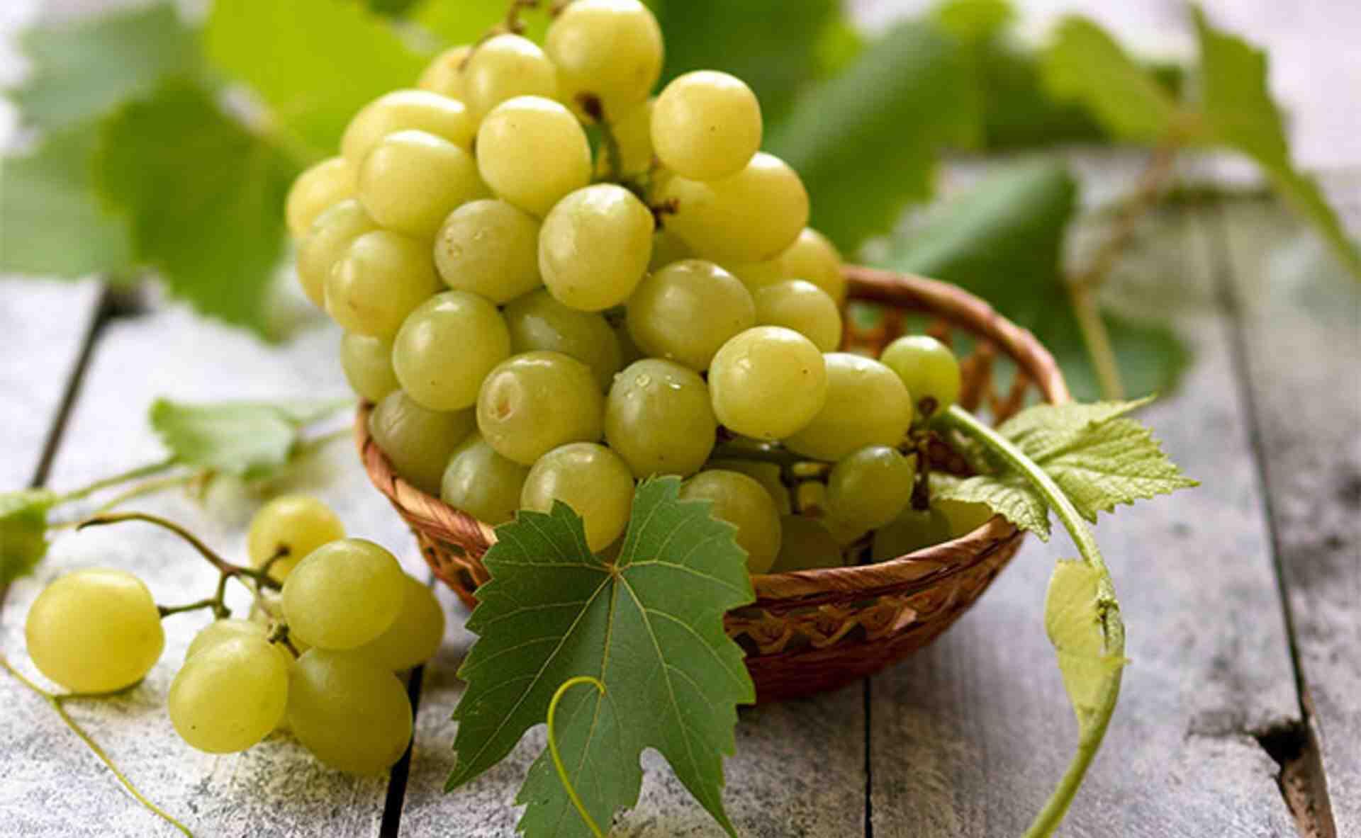 Comment faire du vin à partir du raisin ?