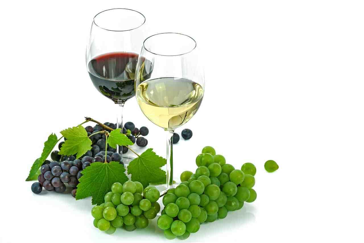 Est-ce que le vin blanc est bon pour la santé ?