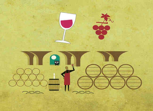 Quel raisin pour faire du vin rouge ?