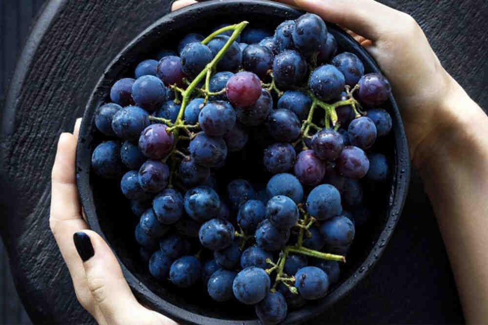 Quel raisin vin rouge ?