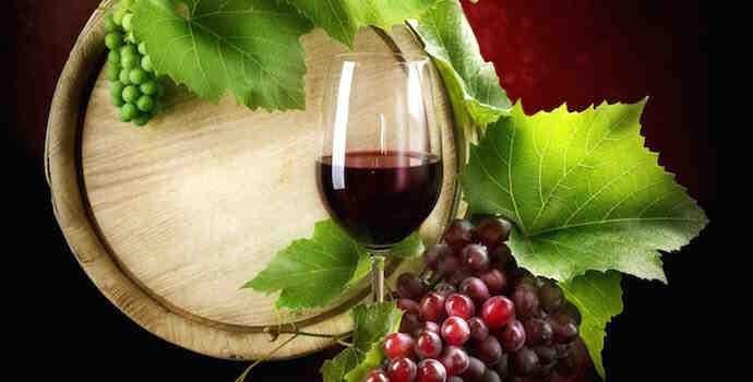 Quelle raisin pour le vin ?